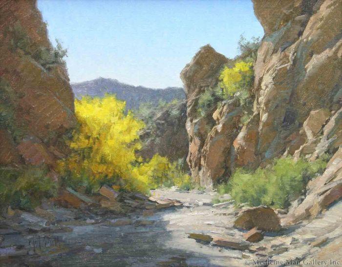 Matt Smith - Palo Verde in Bloom (PLV91933A-0121-001)