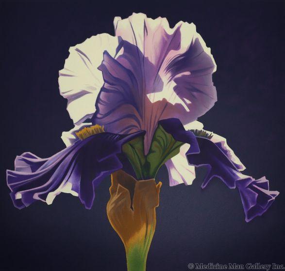 Ed Mell - Morning Iris (Lithograph)