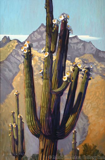 Dennis Ziemienski - Blossoms Beneath the Catalinas