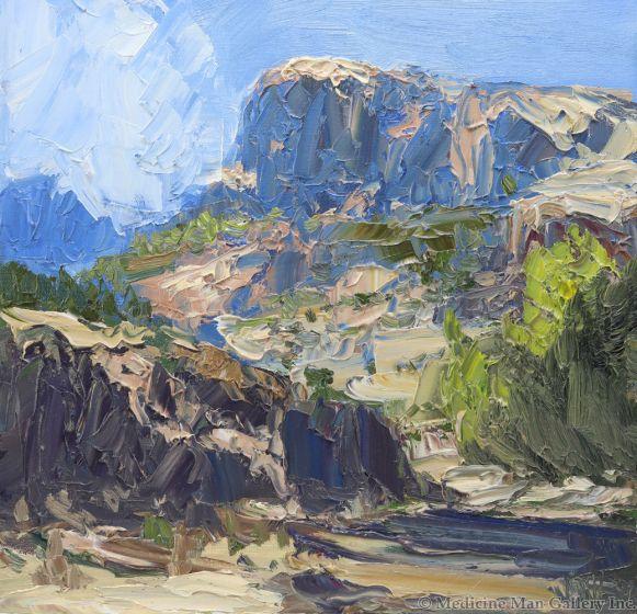 James Cook - Aravipa Canyon Study