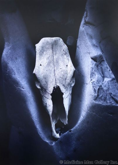Dan Budnik (1933-2020) - Horse Skull, St. Elena Canyon, Big Bend National Park; Texas, 1974 (PDC90211C-0121-010)
