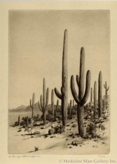 SOLD George Elbert Burr (1859-1939) - Giant Cactus, Tucson, Arizona