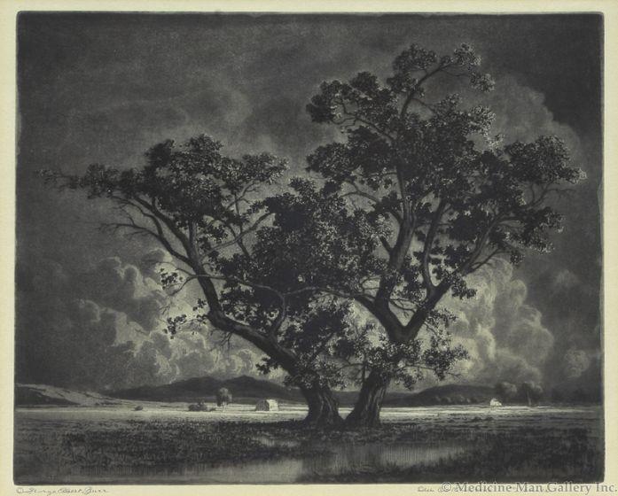 SOLD George Elbert Burr (1859-1939) - Old Cottonwoods