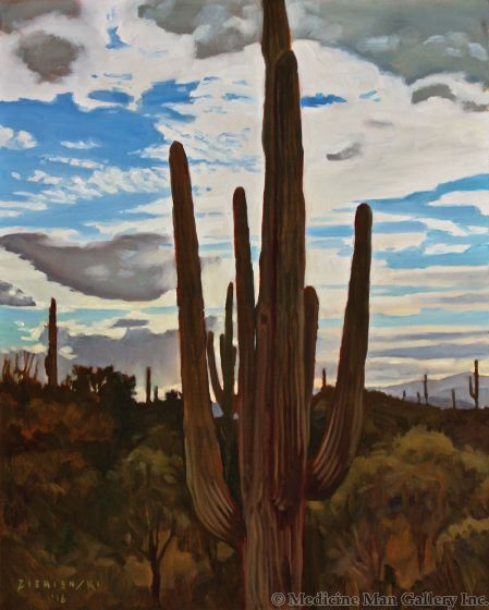 Dennis Ziemienski - Sonoran Sunrise