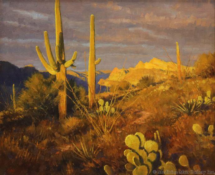 Ralph Oberg (b. 1950) - Sonoran Desert (PLV90189-0521-002)