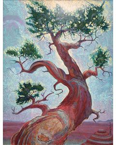 Shonto Begay - Grandfather Protection Tree