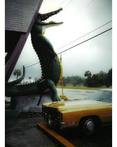 Nathan Benn - Alligator Parking, St. Augustine, FL 1981