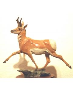 Star Liana York - Antelope