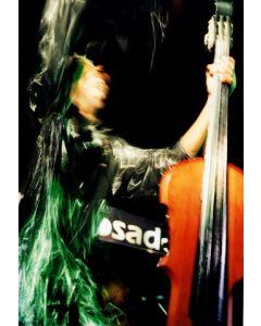 Ned Sublette - Bassist of Charanga Habanera