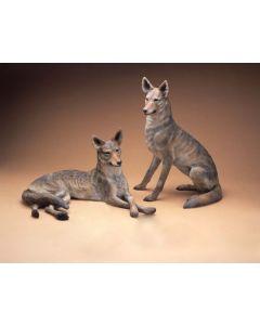 Star Liana York - Coyote Couple