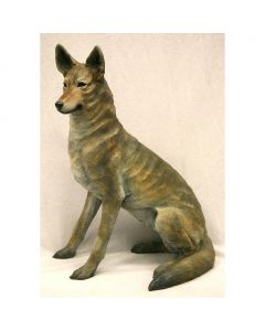 Star Liana York - Coyote III