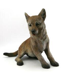 Star Liana York - Coyote II Pup (sitting)