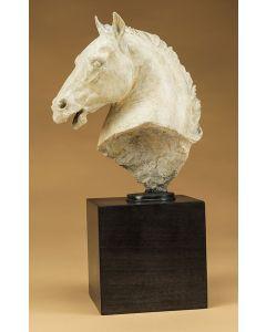 Star Liana York - Greek Horse