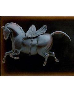 Star Liana York - Horse Fly I