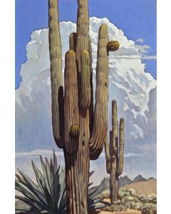 SOLD Dennis Ziemienski - Grand Saguaro with Thunderhead
