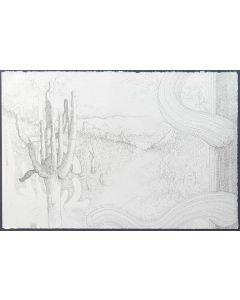 Josh Gibson - Idios Kosmos: Saguaro Village