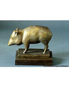 Shirley Thomson-Smith - Life's a Boar