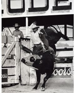 Louise Serpa (1925-2012) - David Fournier: Wins Tucson Pro Rodeo Ass'n, 1989