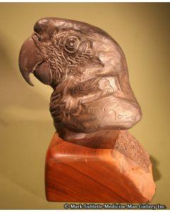 Mark Rossi - Macaw Portrait