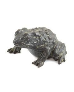Mark Rossi - Spadefoot Toad