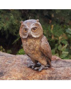 Star Liana York - Owlette (Mini)