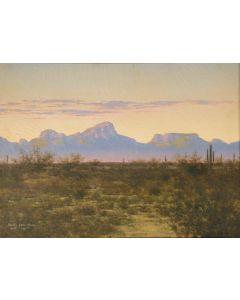 SOLD Audley Dean Nicols - Tucson Mountains (Near Indian Oasis, AZ)