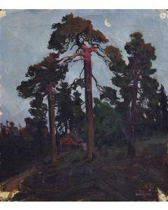 James Swinnerton (1875-1974) - Sequoia Study