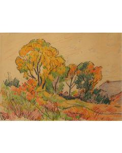 x SOLD Warren E. Rollins (1861-1962) - Farmington, New Mexico