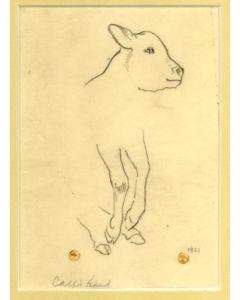 Maynard Dixon (1875-1946) - SOLD - Calf's Head