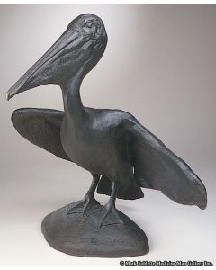 Mark Rossi - Pelican Pose 1