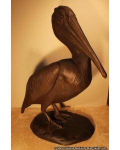 Mark Rossi - Pelican Pose 2