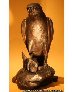 Mark Rossi - Peregrine Falcon with Prey
