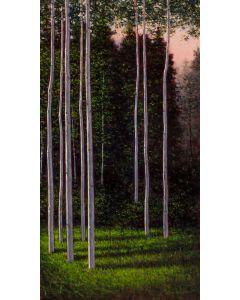 Jeff Aeling - Last Light on Aspens (PLV90107-0121-005)