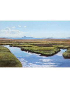 Jeff Aeling - Creek Near Hartsel, Colorado