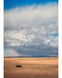 Jeff Aeling - Afternoon, San Cristobal, NM