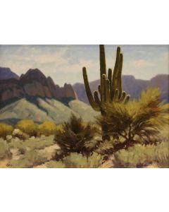 Ralph Oberg (b. 1950) - Backlit Saguaro (PLV90189-0521-001)