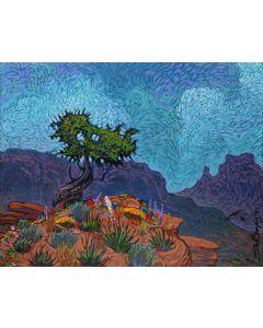 Shonto Begay - Bouquet Ridge (PLV90210A-0421-005)