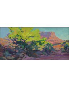 Jill Carver – Pinyon Pine and Fisher Mesa (PLV90335B-0221-015)