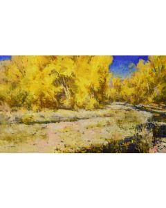 Jill Carver - Dryland Cottonwoods