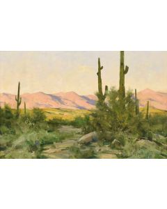 Matt Smith - Tonto Verde Sundown (PLV90346B-1219-004)
