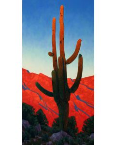 x SOLD Datz, Stephen C. - Monarch of the Desert