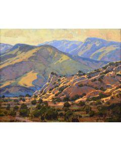 Bill Gallen - Desert Twilight
