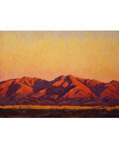 SOLD Bill Gallen - Desert Twilight