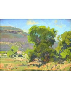 Bill Gallen - Summer Cottonwood