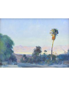W. Jason Situ - Desert Sunset