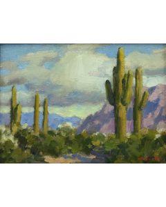 Gregory Hull – Desert Rain (PLV90814-0421-010)