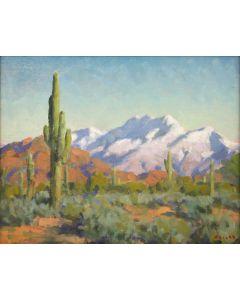 Gregory Hull - Winter Desert