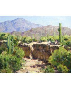 Gregory Hull - Desert Wash