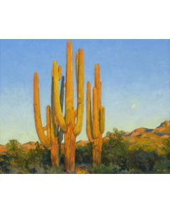Gregory Hull - Desert Dusk