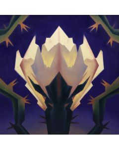 Ed Mell - Cholla Symmetry